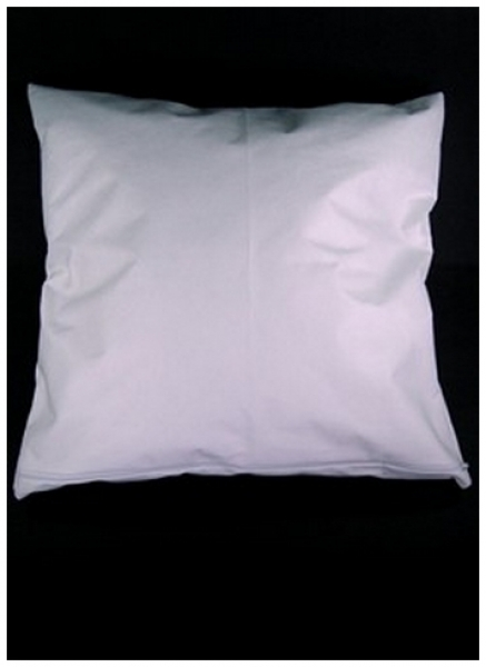 kissenbezug f r hausstauballergiker encasing. Black Bedroom Furniture Sets. Home Design Ideas